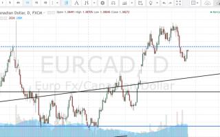 Borsa e Finanza: cambio euro dollaro canadese