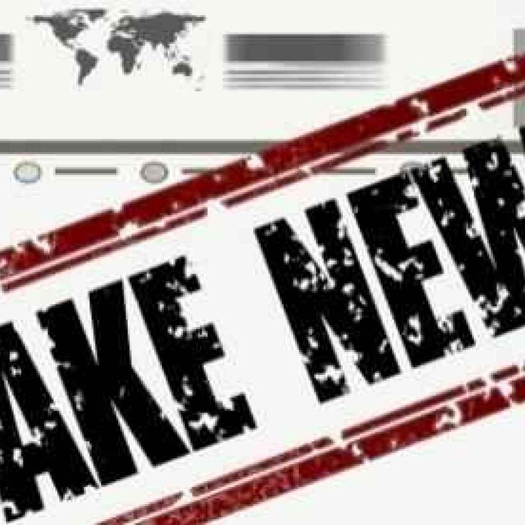 elezioni  politica  russia  fake news