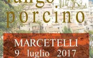 Roma: feste  sagre  rieti  funghi porcini