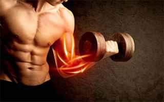 Fitness: probulus  integratori sportivi