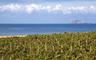 Cagliari: viaggi  vini  sardegna  borghi  estate