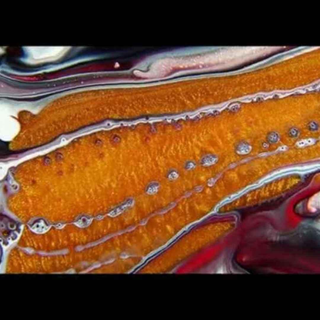 Thomas Blanchard usa colore, sapone liquido e olio per creare un mini-film astratto