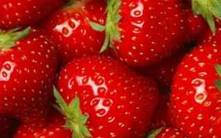 Alimentazione: fragole  alimenti  polifenoli