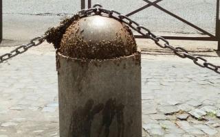Roma: roma  api  trasporto pubblico