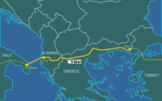 Bari: tap  puglia  ulivi  gasdotto