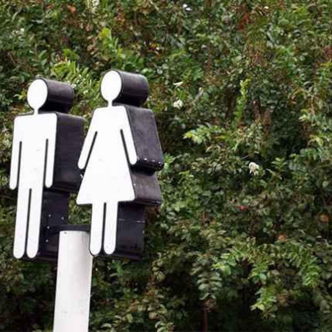lgbt  gender  intersex  agender  genere
