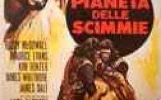 Cinema: recensione film