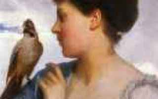 Arte: léon jean bazile perrault  parigi