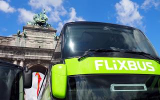 Viaggi: flixbus  viaggi  libri