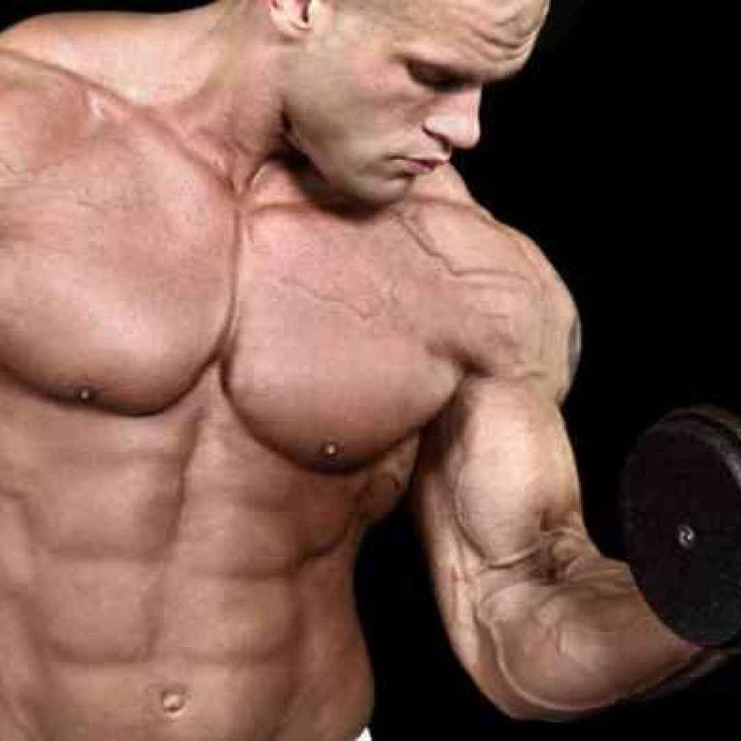 ipertrofia  massa muscolare  forza