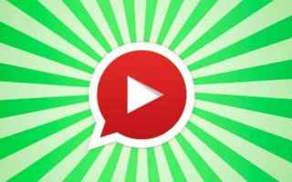 App: whatsapp  video  youtube