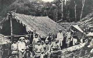 Storia: emigrazione garfagnana brasile coloni