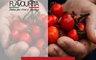 pomodoro  alimentazione sana  benessere