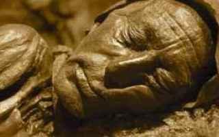 uomo di tollund mummie