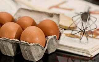 Alimentazione: uova  fipronil