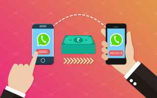 App: whatsapp  payments  apps  android