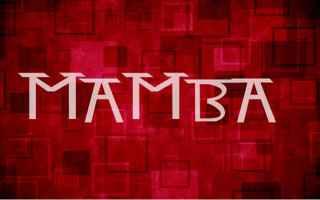 mamba  ransomware  windows