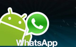 App: whatsapp  citazioni  gruppi