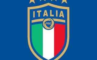 Nazionale: logo  nazionale  calcio