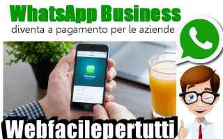 App: whatsapp whatsapp business aziende