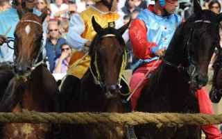 Torino: asti  palio  cavalli  purosangue