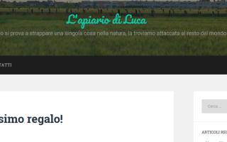 Blog: organizer  recensioni  novità  blog