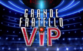 Televisione: reality  gfvip  canale5  ilary blasi
