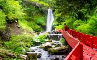 acqua  bosco  illumina  natura  paesaggi
