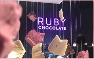 Gastronomia: cioccolato  rosa  naturale  svizzera