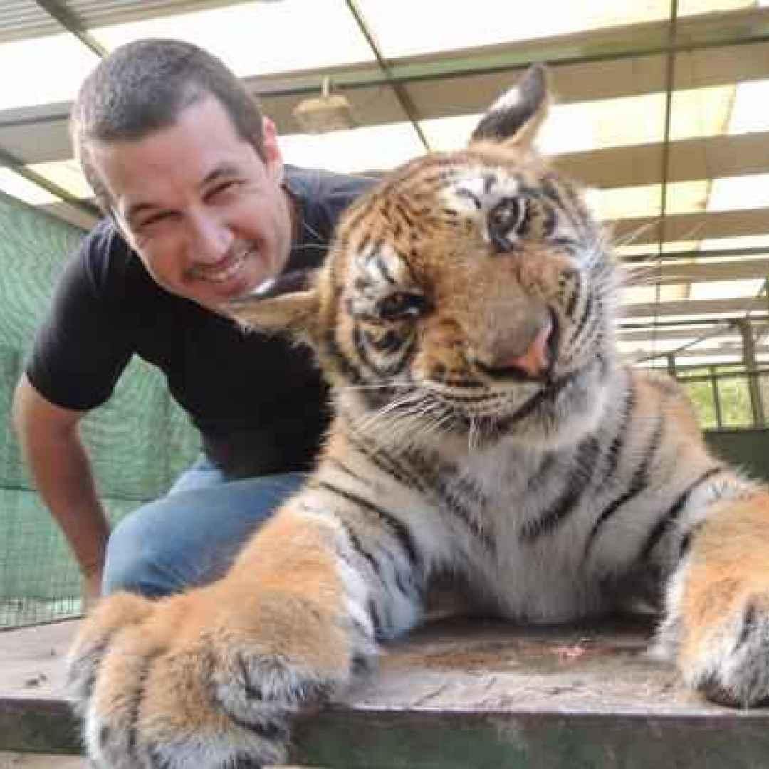 animali  zoo  argentina