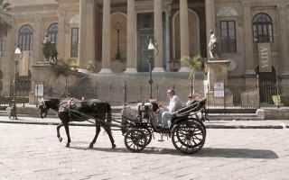 sicilia  messina  palermo  cavalli