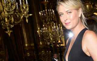 Tennis: tennis grand slam  news sharapova