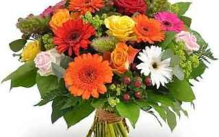 Amore e Coppia: fiori  linguaggio dei fiori  aforismi