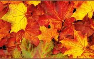 Cultura: equinozio d'autunno  proserpina