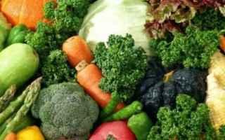 Alimentazione: orto  alimentazione  zucchine  cipolle