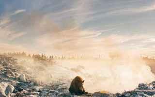 Immagini virali: fotografia  natura  canada