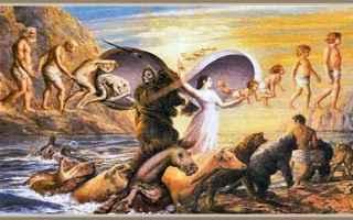 Religione: energia immortale  reincarnazione