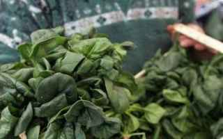 Alimentazione: ritiro dal mercato  taleggio  spinaci