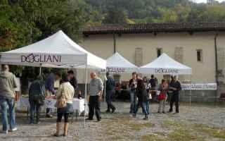 Torino: dogliani  docg  langa  enogastronomia