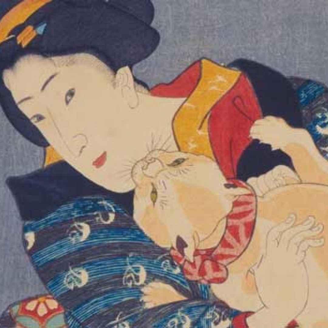 arte mostre kuniyoshi milano permanente