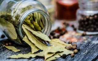 Alimentazione: ricetta nutrizione wellness benessere