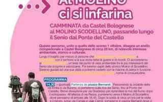 Notizie locali: castel bolognese  molino scodellino