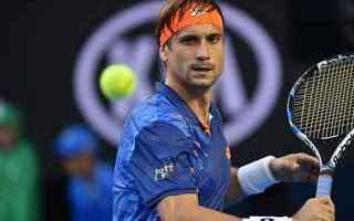 tennis  grand slam anversa ferrer