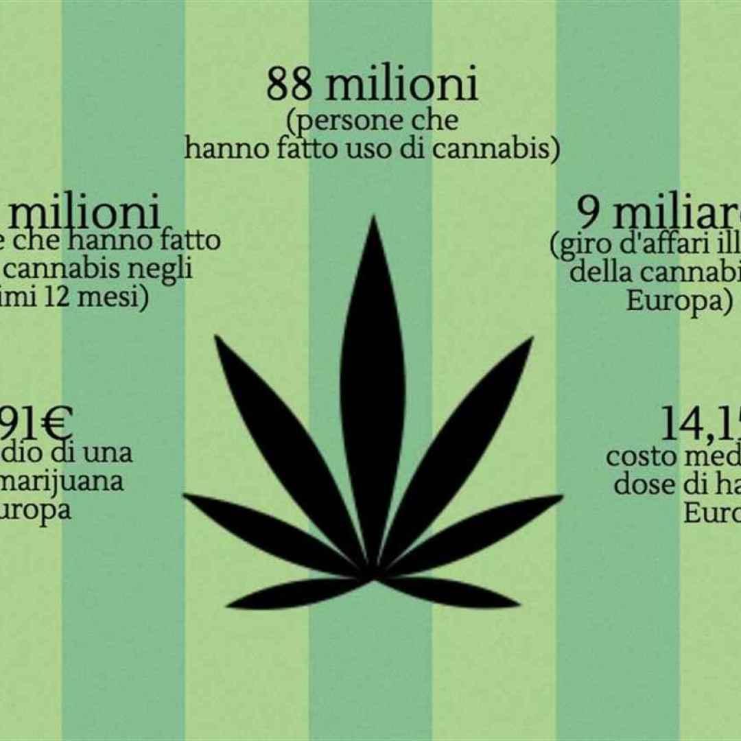 cannabis  legge  legalizzazione