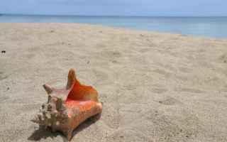 Scienze: sabbia  terra  sabbia bianca  geologia