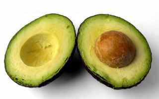Alimentazione: avocado proprietà guacamole ambiente