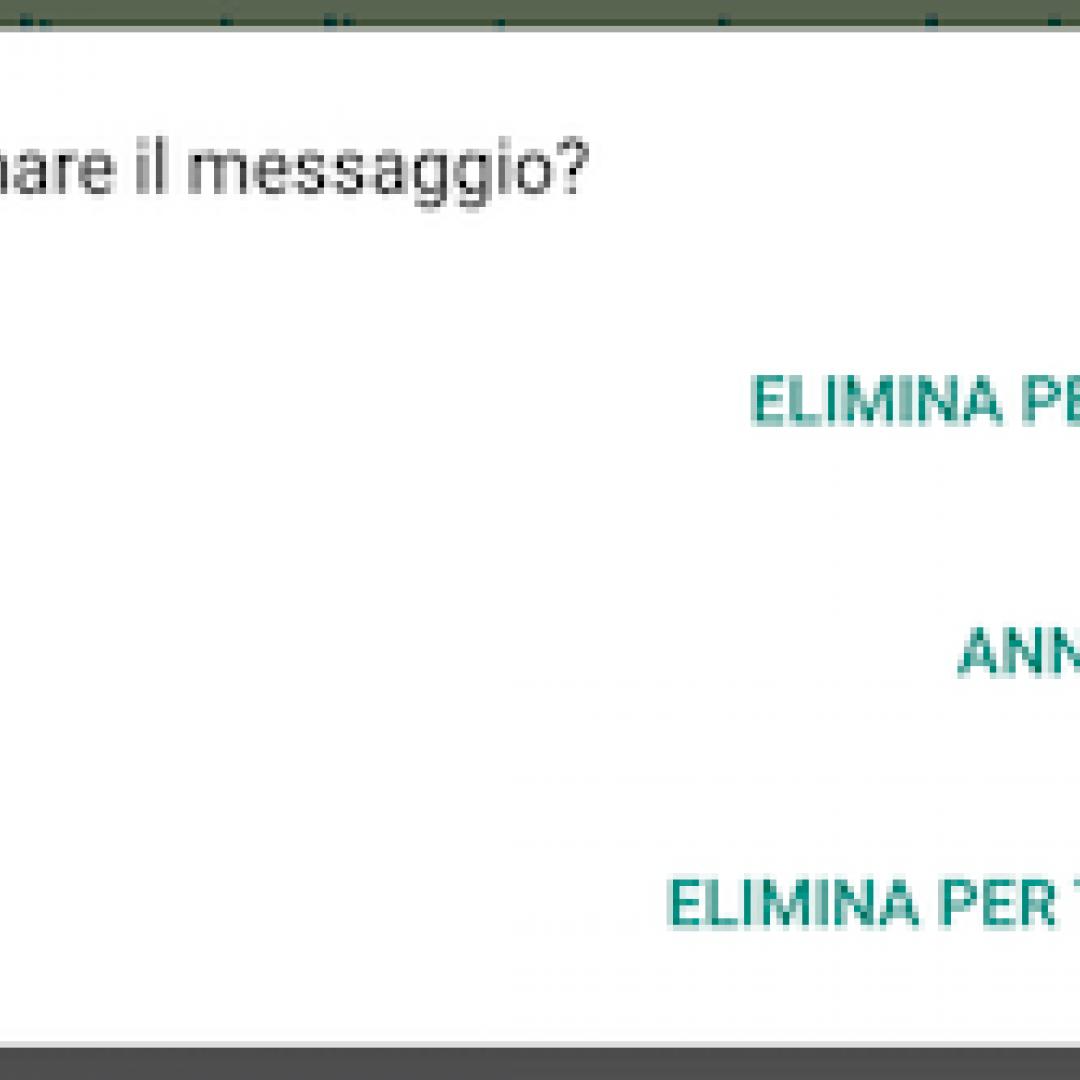 eliminare messaggi  whatsapp  messaggi