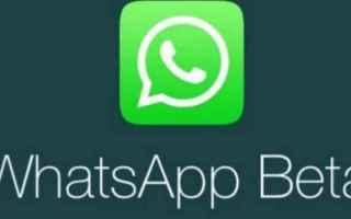 App: whatsapp  android  beta
