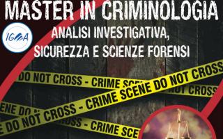 master  criminologia