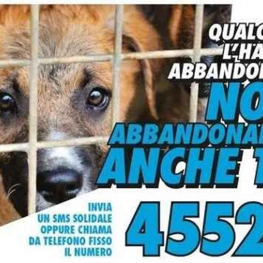 animali sms donazione